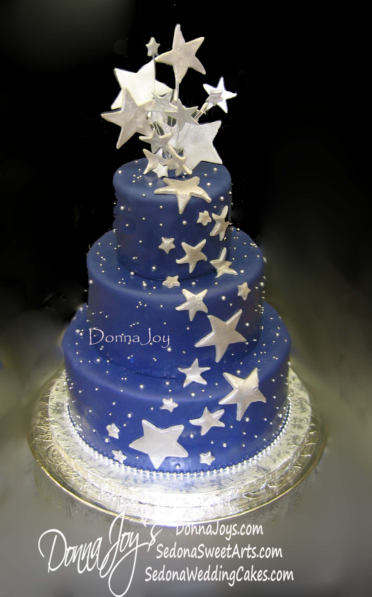 Astronomers wedding Cake